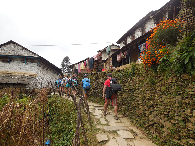 Annapurna Treat & Safari