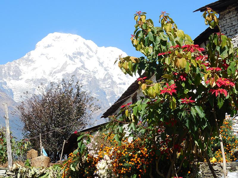 Annapurna Snapshot Trek